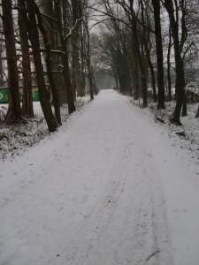wwbt-2010-schne